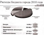 Социально ответственный бюджет - 2010