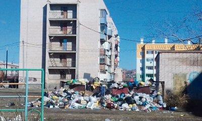Троицкие «управляйки» попались на мусоре
