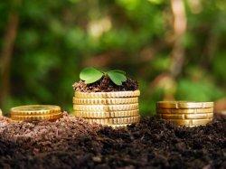 Земельный налог для юридических лиц