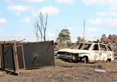 Сгорели тысячи гектаров леса и десятки домов
