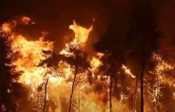 Чудо в Греции во время пожаров 2021 года (видео)