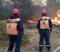 Огнеборцы спасли Лебедевку от пожара