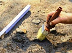 В Троицке нашли останки нескольких человек