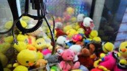 Любители мягких игрушек задержаны